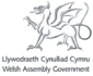 Welsh Assembly Governement