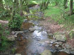 Full Brook Stream