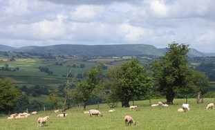 Black Mountains seen from the Three Castles Walk